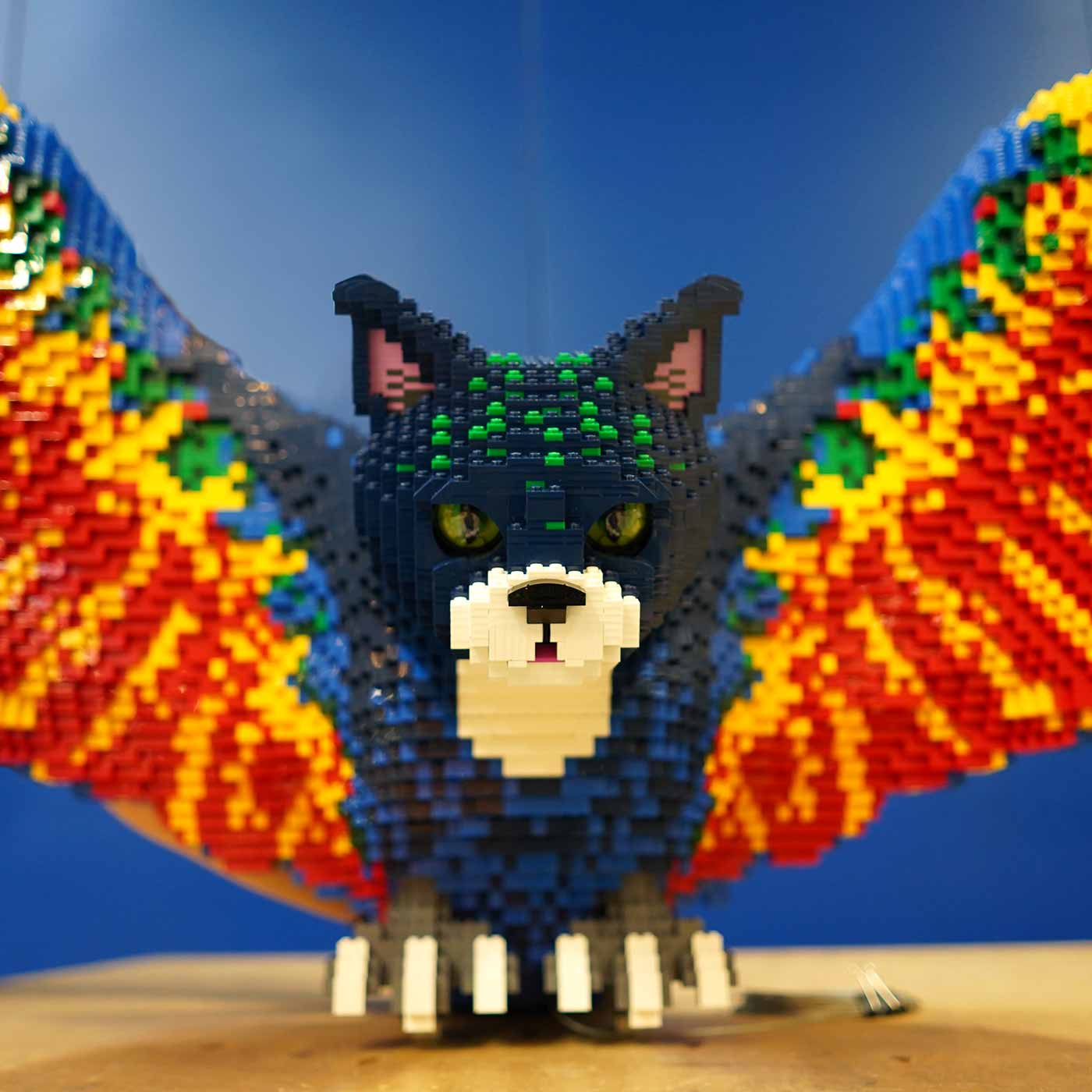 Parrocat for LEGO MYTHICA: World of Mythical Creatures
